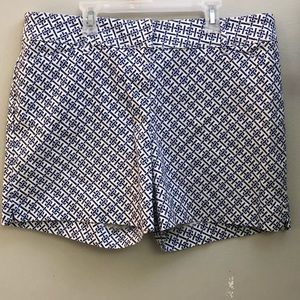 The Limited navy and white shorts